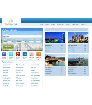 Travel Search Engine Website